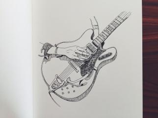 Hozier's guitar